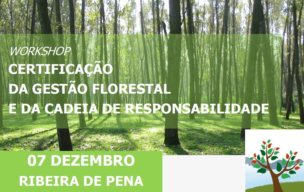Certificacao Florestal 7Dez