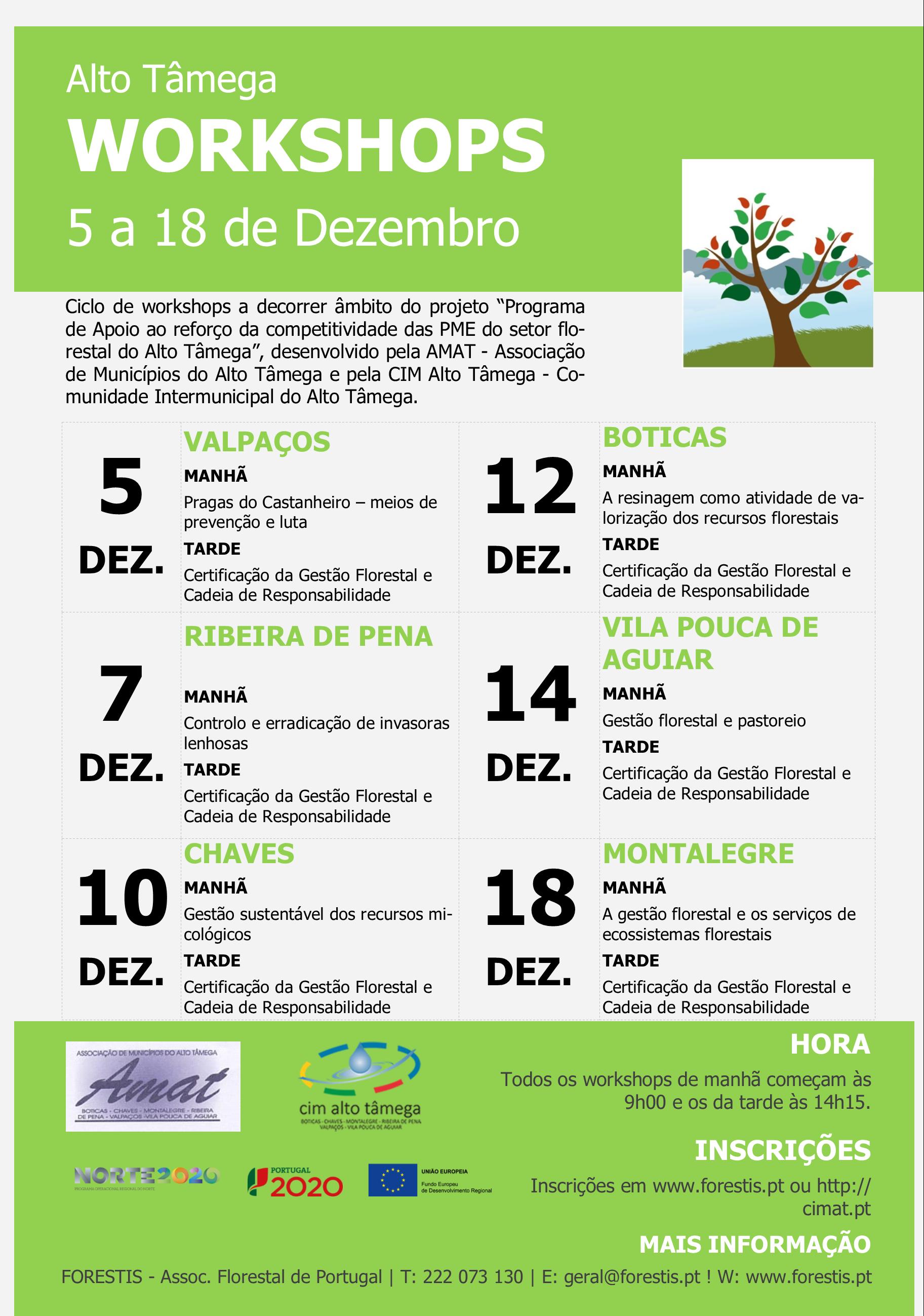 Programa dos workshops de apoio ao reforço da competitividade das PME do setor florestal do Alto Tâmega.